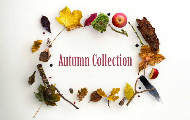 Autmn Collection Email Header